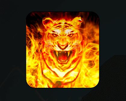 Firecat Kodi Addon By uKodi repo: Movies, TV, Boxsets, Live - Kodi Tips