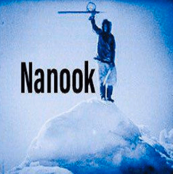 Nanook Kodi Addon Install Guide: Elysium Fork