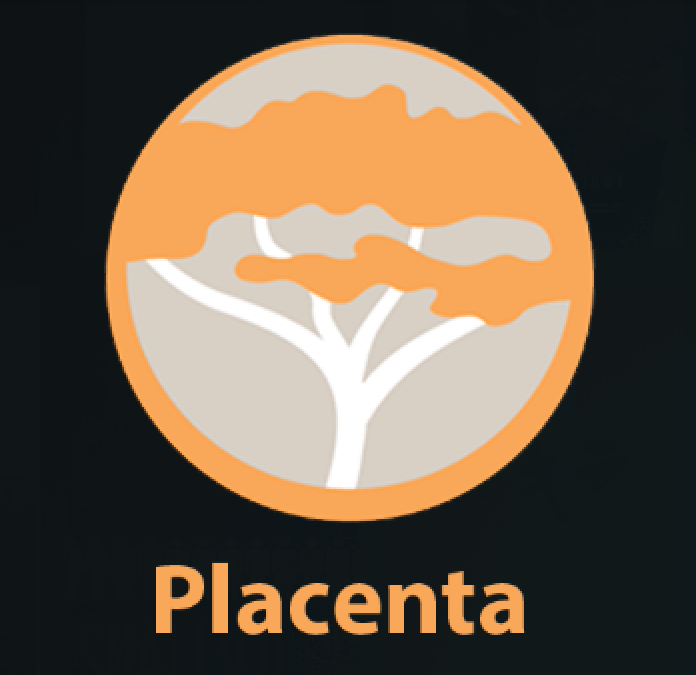 Placenta Alternatives: Best Kodi Addon Replacement for Blamo Repo