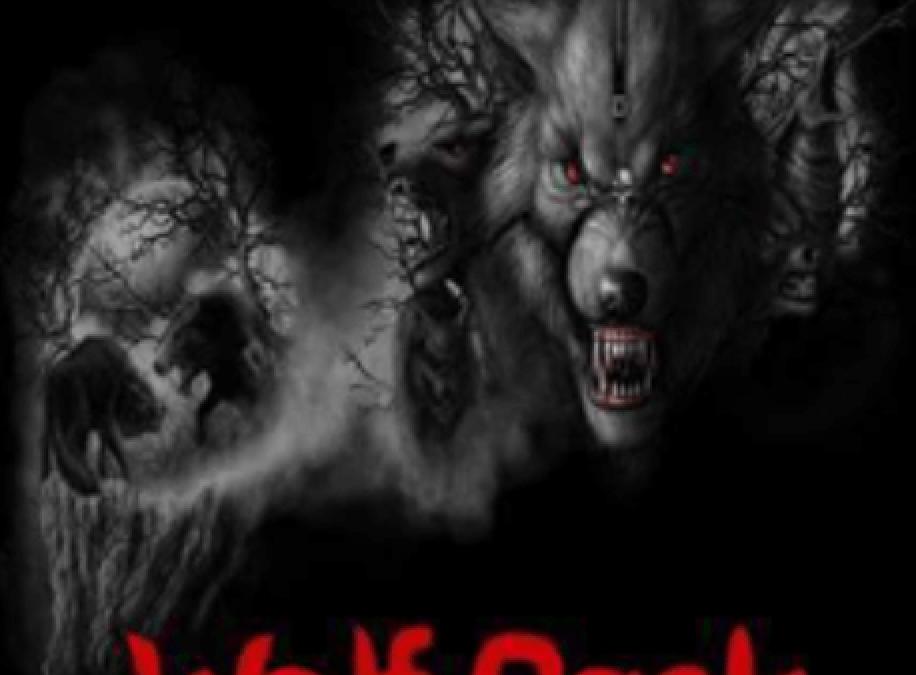 Wolfpack Kodi Addon Install Guide; Playlist addon