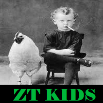 ZT Kids Kodi Addon: Shows, Movies, Youtube Videos